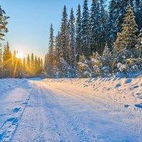 Winter road :: Boris Altynnikov