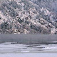 Зимняя природа :: Татьяна Соловьева