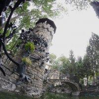 Старый парк.н.п.Кабардинка :: Alexey YakovLev