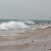 пляж недалеко от Дварки :: maikl falkon