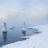Морозным вечером. :: Андрей Олонцев