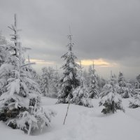 зима 10 :: Константин Трапезников
