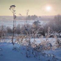 Зимнее солнце 4 :: Валерий Талашов