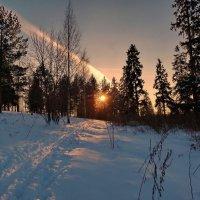 Солнечные дорожки :: Валерий Талашов