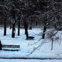 Белый зайчик, черный пес :: Ирина Сивовол