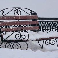 Зимняя романтика. :: Paparazzi