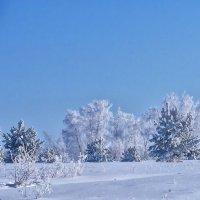 В чудесный день зимы :: Serz Stepanov