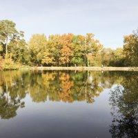 Осень в городском парке :: Сергей Федоткин