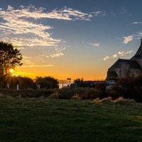 Sunset behind the tree :: Alena Kramarenko
