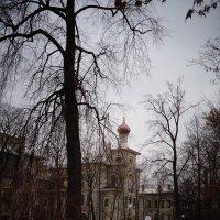 Зимний пейзаж с вновь отстроенной церковью в Александровском парке. :: Светлана Калмыкова