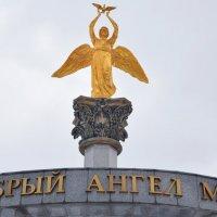 Добрый ангел мира. :: Татьяна Помогалова