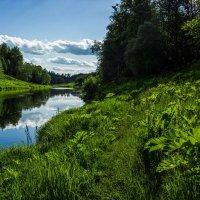 На Москве-реке :: Сергей Куранов