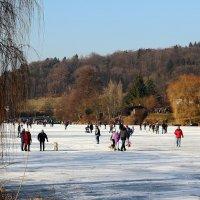 Без снега,но со льдом. :: Людмила Шнайдер