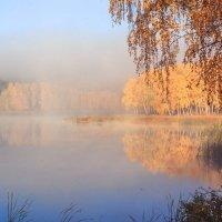 осенний туман :: Василий И Иваненко