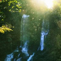 Tamaraw Waterfalls, Mindoro :: Nika Polskaya