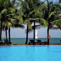 Море, пальмы и вода :: Евгений Карский