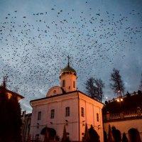 ночной мрак :: Виктор Николаев