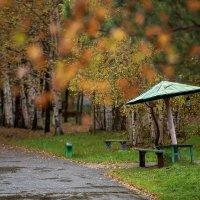 НазваниеМокрая осень :: константин толмачев