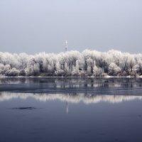 Морозная красота. :: Svetlana