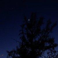 Венера :: Виктор Стельник