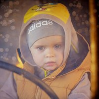 Юный водитель :: Olga Schejko
