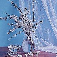 С ветками вишни. :: alfina