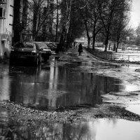 ХXI :: Роман Шершнев
