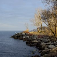 Апрельским вечером гуляли по острову (оз.Онтарио, Канада) :: Юрий Поляков