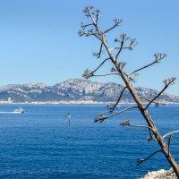 Море,море :: Наталия
