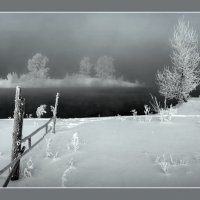 Холодные берега :: Maxim Agafonoff