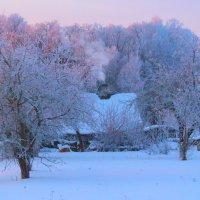 Ранним морозным утром... :: Anna P