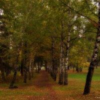 В парке. :: Svetlana