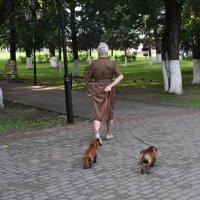 Три оттенка коричневого или трио в одной гамме)) :: Лето Теплое