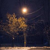 Луч света в царстве тьмы :: Дмитрий Костоусов