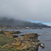 туман над Тихим... :: НАТАЛЬЯ