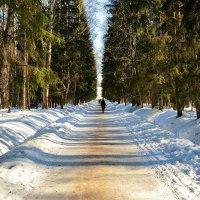 Аллея в очарование... :: Sergey Gordoff