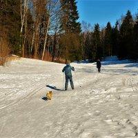 Снежная дорожка вдоль Славянки реки... :: Sergey Gordoff