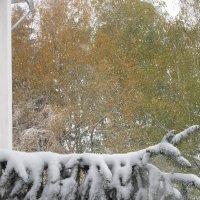 Осень, осень, ну, давай у листьев спросим... :: Вячеслав Медведев