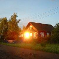 солнце в гости к нам пришло :: Александр Попков