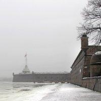 Туман  в Санкт-Петербурге :: Ирина Румянцева