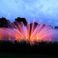 Парк цветов (серия). Поющие фонтаны :: Nina Yudicheva