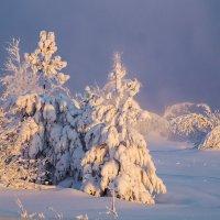А за городом зима... :: Оксана Галлямова