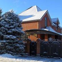 Большой и надёжный дом :: Татьяна Смоляниченко
