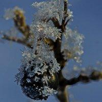 Снежинки падали :: Ильдус Хамидулин