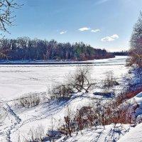 Морозный  день.. :: Валера39 Василевский.