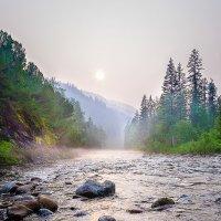 Камушки на реке... :: Петр Панков
