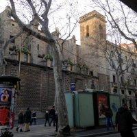 Зима в Барселоне :: Елена