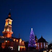новогодняя ночь :: ruslan romaniuk