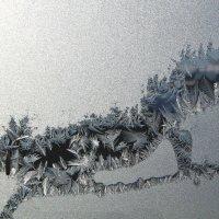Сказки зимнего окна  Лиса Патрикевна)) :: Анна