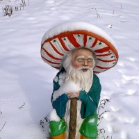 Гном под снегом :: Alexander Varykhanov